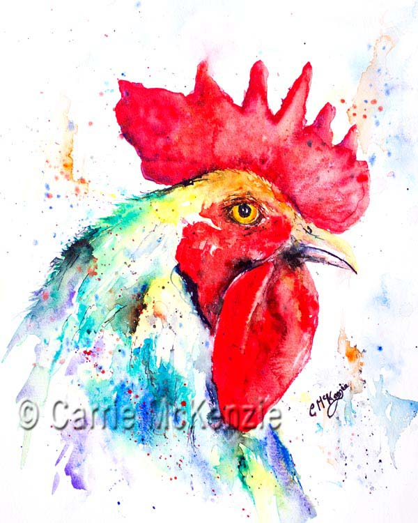 Cockerel painting watercolour. Hens and roosters.