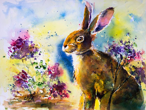 hare watercolour painting, art, hares rabbits