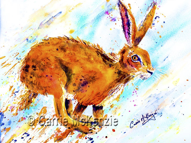hare racing, hare painting, watercolour, art, hare racing painting