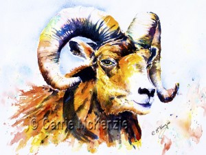 wildlife paintings, ram
