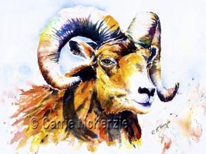 wildlife paintings, ram