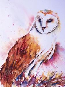 Barn-owl-brusho-16x12