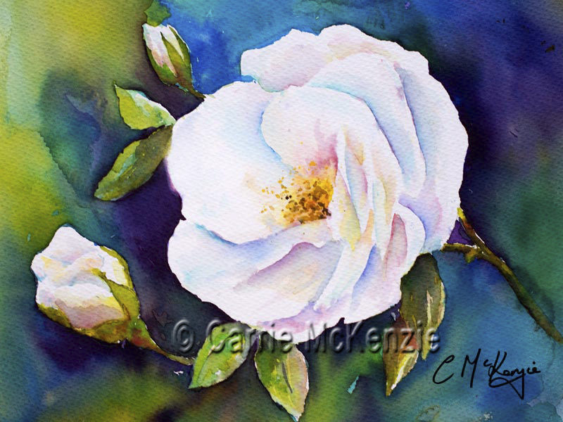 WHITE ROSE PAINTING ART FLOWER