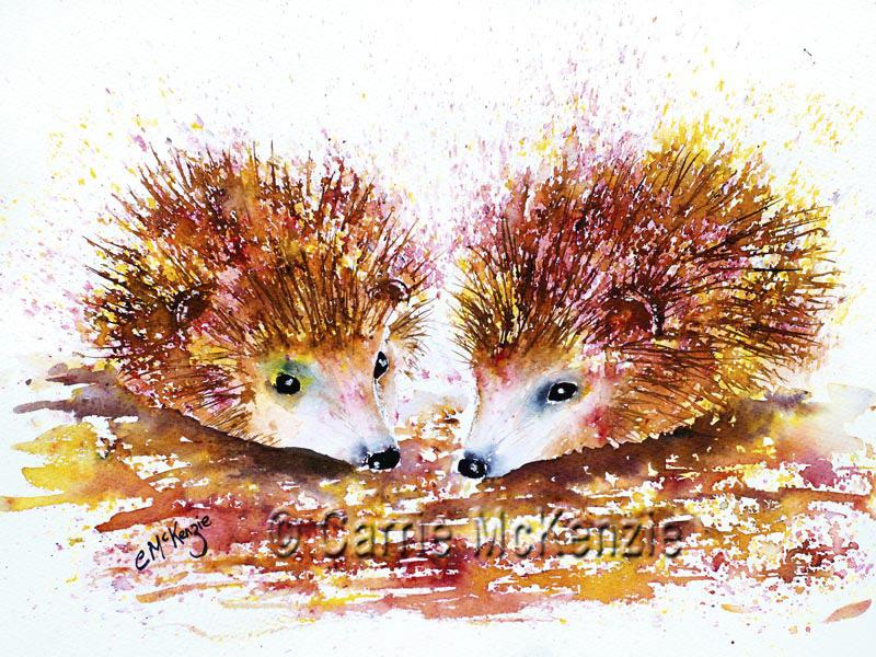 hedgehog, hedgehogs painting, hedgehogs art, nature painting, nature, nature art, wildlife painting, wildlife, wildlife art