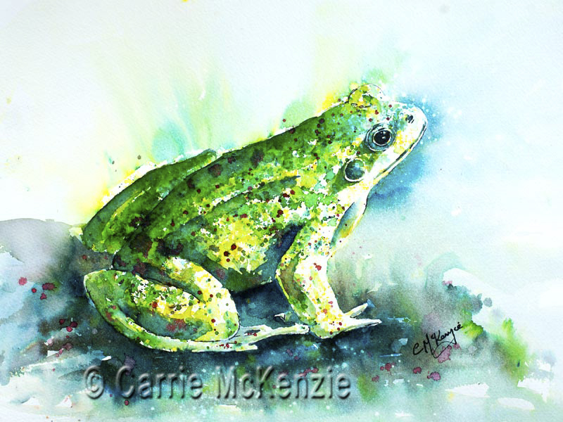 frog painting, frog art, wildlife painting, wildlife art, frog, toad, toad painting, toad art, kiss