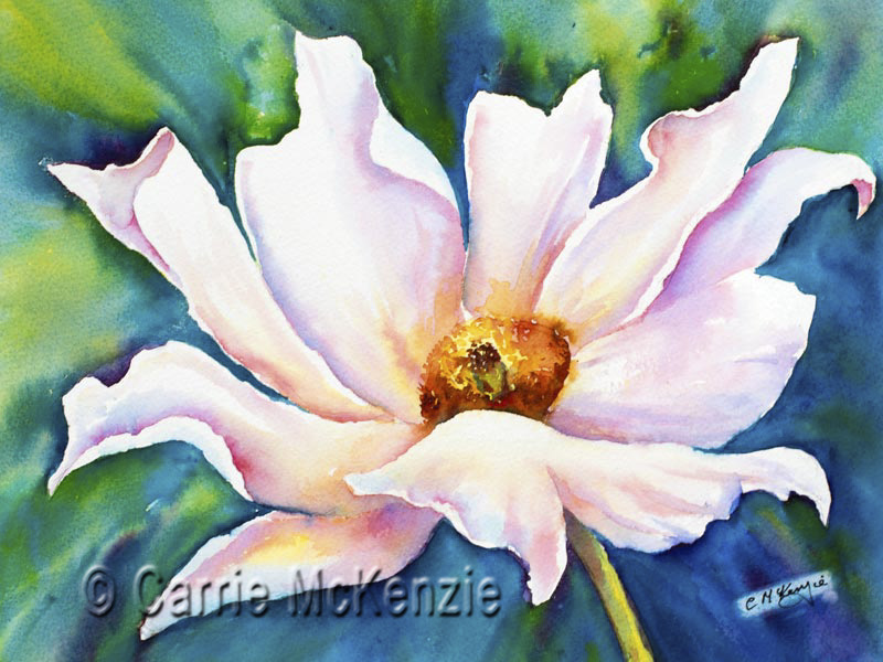poppy, poppy painting, white poppy, white poppies, poppies, art, flower, prickle poppy