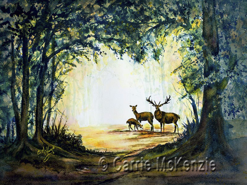 DEER, STAG, FAWN, WOODLAND, FOREST, NATURE, COUNTRYSIDE, WILDLIFE,