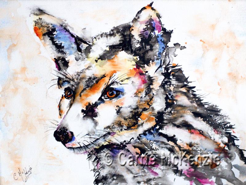 fox, wildlife, animal, woodland, nature, foxy