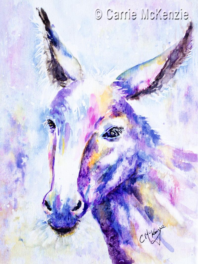 donkey, wildlife, farm, animal, nature, little donkey