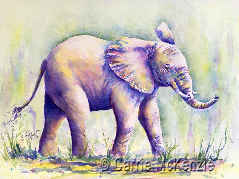 baby ellie, baby elephant, wildlife, nature, animal, elephant, africa, wild,