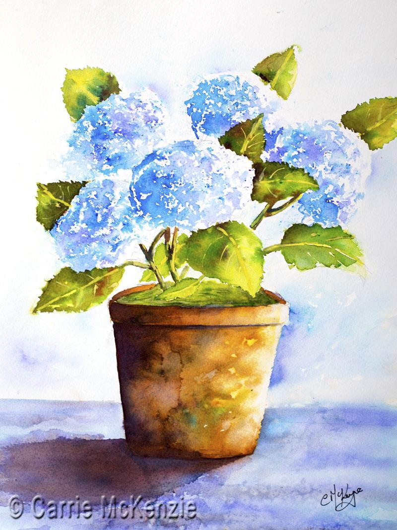 blue hydrangea, hydrangea, hydrangea flower, hydrangea painting, brusho painting, hydrangea brusho, hydrangea art, brusho, nature, flower art