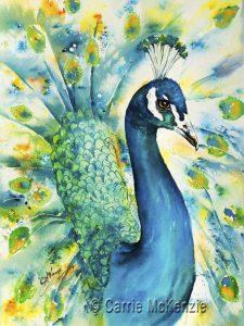 peacock, bird, nature, wildlife, peacock painting