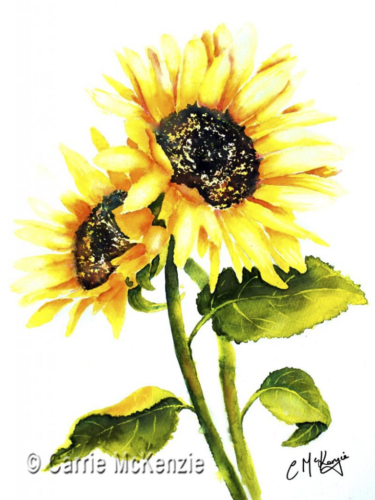 sunflower, plant, nature, garden, gardening, flower, sunflower art, sunflower painting
