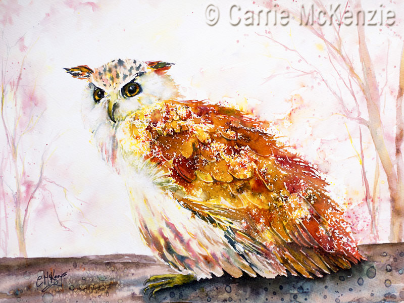 owl painting, owl brusho, bird painting, nature, owl art,